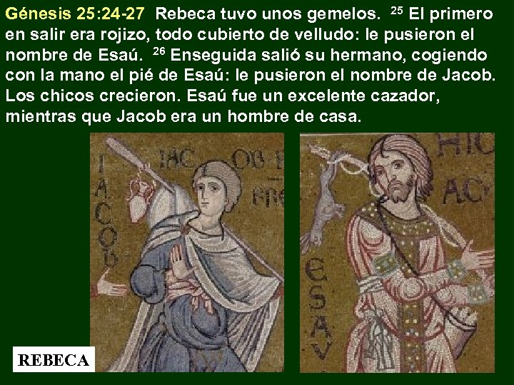 Génesis 25: 24 -27 Rebeca tuvo unos gemelos. 25 El primero en salir era