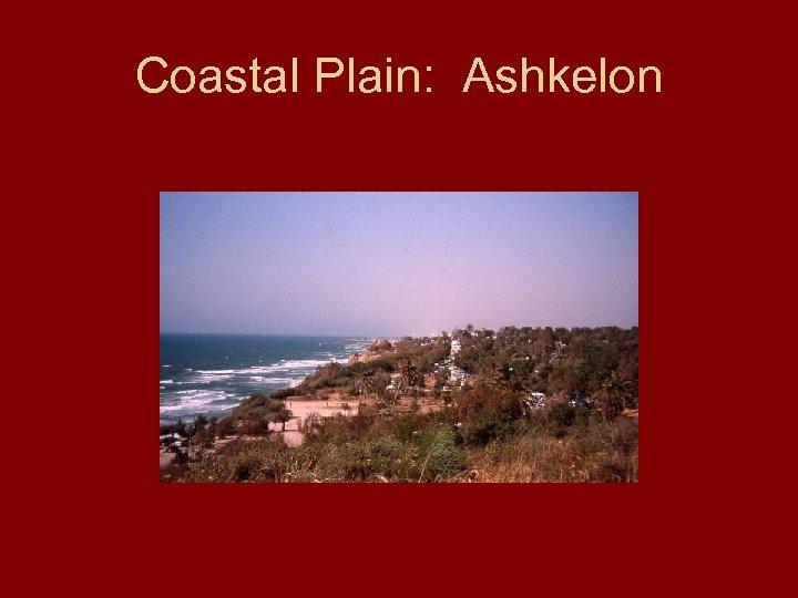 Coastal Plain: Ashkelon