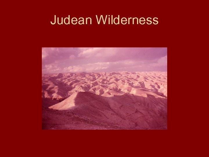 Judean Wilderness