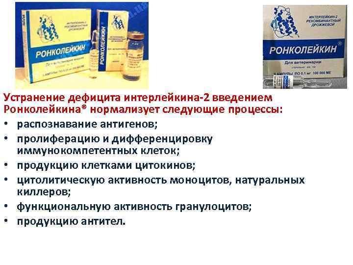 Устранение дефицита интерлейкина-2 введением Ронколейкина® нормализует следующие процессы: • распознавание антигенов; • пролиферацию и