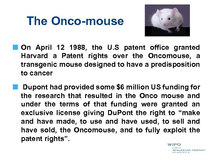 The Onco-mouse On April 12 1988, the U. S patent office granted Harvard a