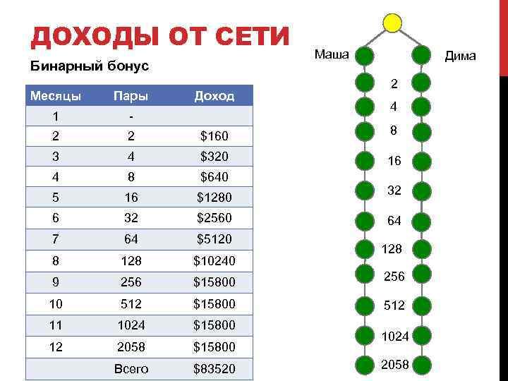 ДОХОДЫ ОТ СЕТИ Бинарный бонус Доход Маша Дима 2 Месяцы Пары 1 - 2