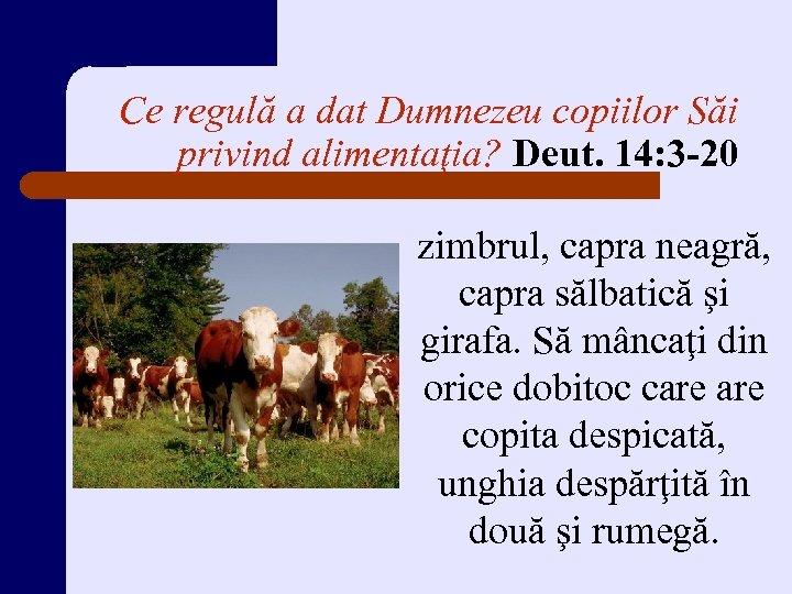 Ce regulă a dat Dumnezeu copiilor Săi privind alimentaţia? Deut. 14: 3 -20 zimbrul,