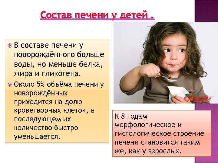 Состав печени у детей. В составе печени у новорождённого больше воды, но меньше белка,