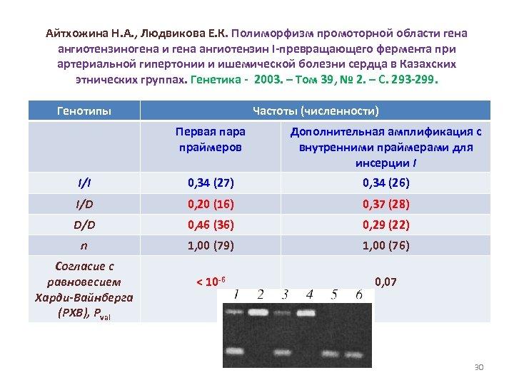 Айтхожина Н. А. , Людвикова Е. К. Полиморфизм промоторной области гена ангиотензиногена и гена