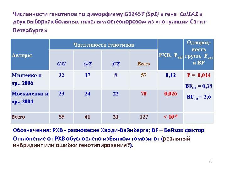 Численности генотипов по диморфизму G 1245 T (Sp 1) в гене Col 1 A