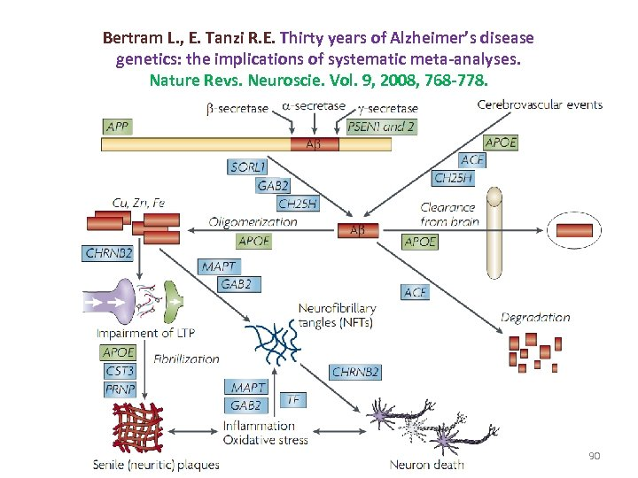 Bertram L. , E. Tanzi R. E. Thirty years of Alzheimer's disease genetics: the