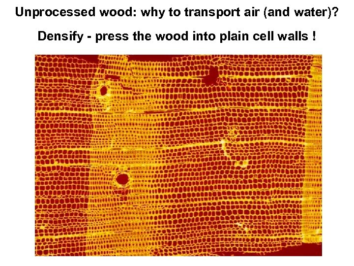 Unprocessed wood: why to transport air (and water)? Densify - press the wood into