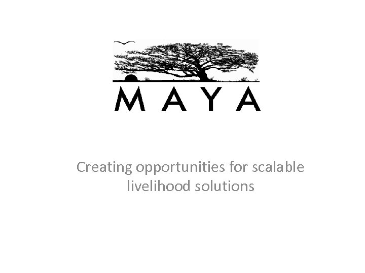 Creating opportunities for scalable livelihood solutions