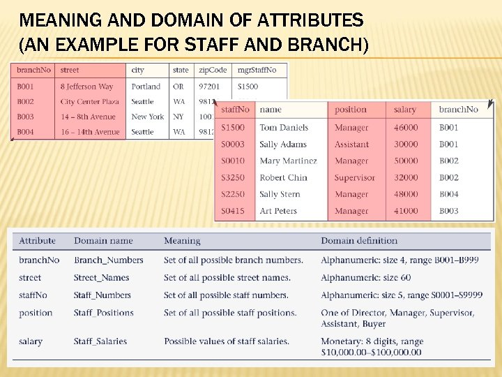 MEANING AND DOMAIN OF ATTRIBUTES (AN EXAMPLE FOR STAFF AND BRANCH) Chapter 2 ©