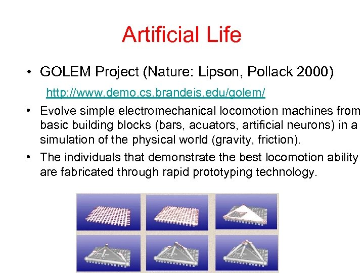 Artificial Life • GOLEM Project (Nature: Lipson, Pollack 2000) http: //www. demo. cs. brandeis.