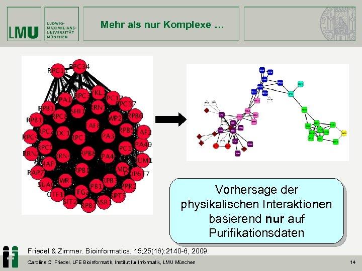 Mehr als nur Komplexe … Vorhersage der physikalischen Interaktionen basierend nur auf Purifikationsdaten Friedel