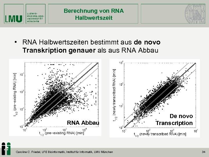 Berechnung von RNA Halbwertszeit • RNA Halbwertszeiten bestimmt aus de novo Transkription genauer als