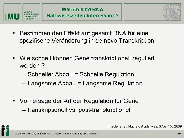 Warum sind RNA Halbwertszeiten interessant ? • Bestimmen den Effekt auf gesamt RNA für