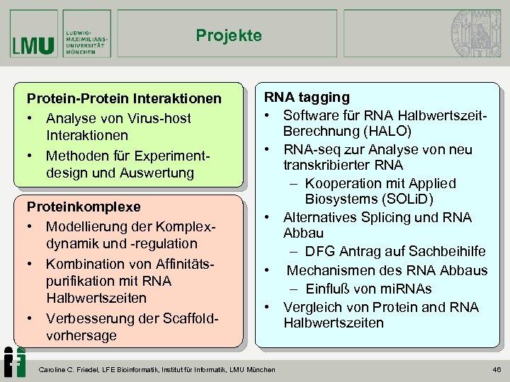 Projekte Protein-Protein Interaktionen • Analyse von Virus-host Interaktionen • Methoden für Experiment- design und