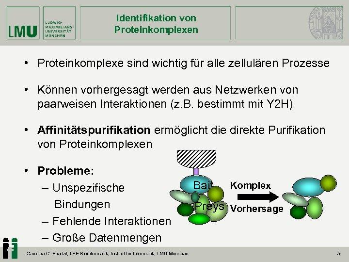 Identifikation von Proteinkomplexen • Proteinkomplexe sind wichtig für alle zellulären Prozesse • Können vorhergesagt