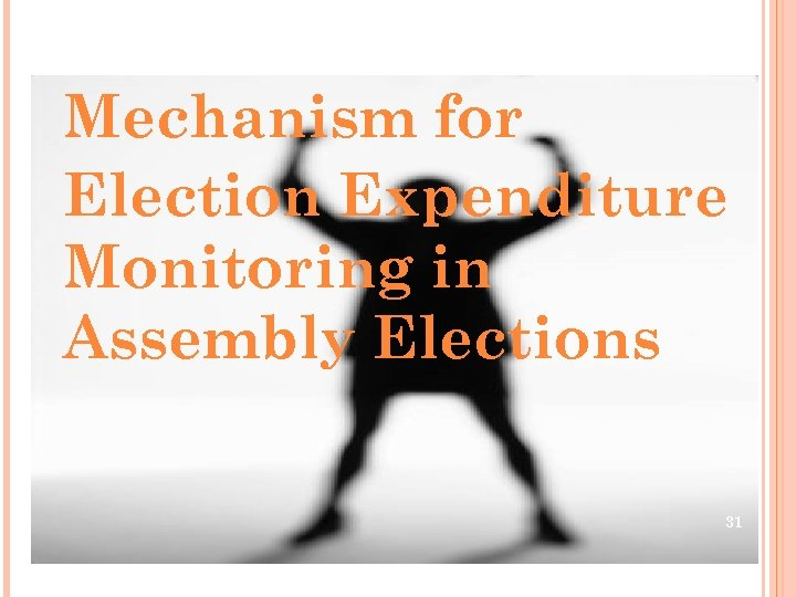 Mechanism for Election Expenditure Monitoring in Assembly Elections 31