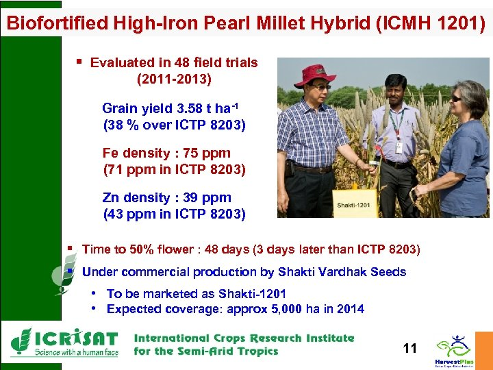 Biofortified High-Iron Pearl Millet Hybrid (ICMH 1201) § Evaluated in 48 field trials (2011