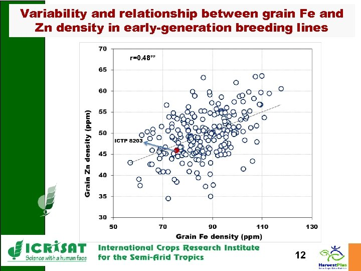 Variability and relationship between grain Fe and Zn density in early-generation breeding lines r=0.