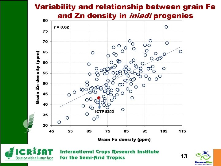 Variability and relationship between grain Fe and Zn density in iniadi progenies 13