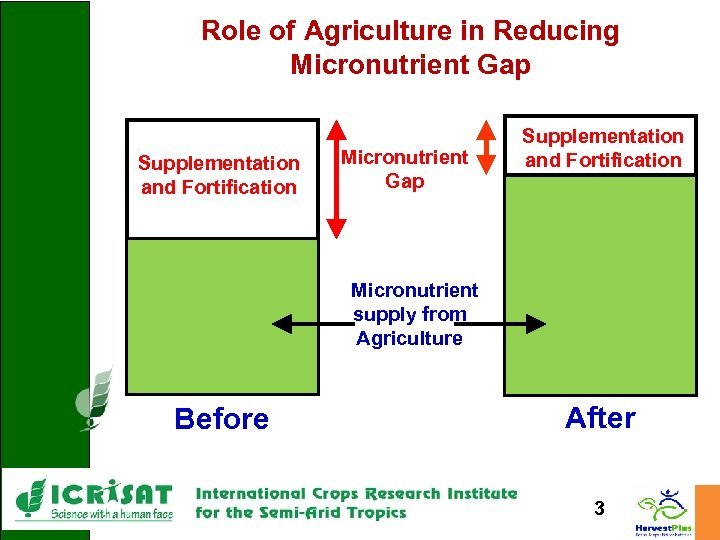 Role of Agriculture in Reducing Micronutrient Gap Supplementation and Fortification Micronutrient supply from Agriculture