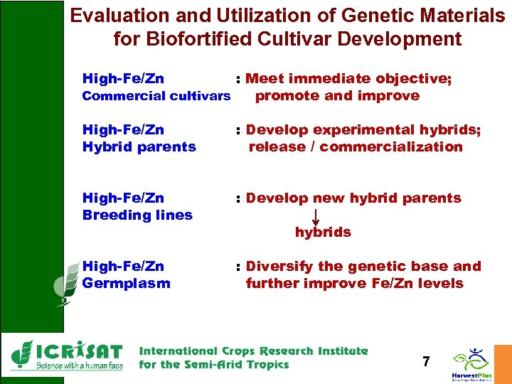 Evaluation and Utilization of Genetic Materials for Biofortified Cultivar Development High-Fe/Zn : Meet immediate
