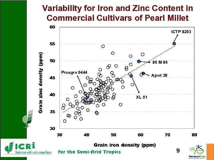 Variability for Iron and Zinc Content in Commercial Cultivars of Pearl Millet ICTP 8203