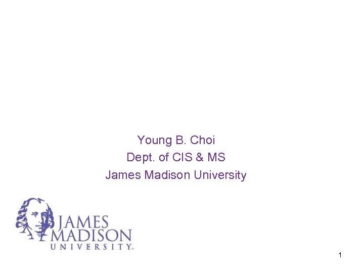 Young B. Choi Dept. of CIS & MS James Madison University 1