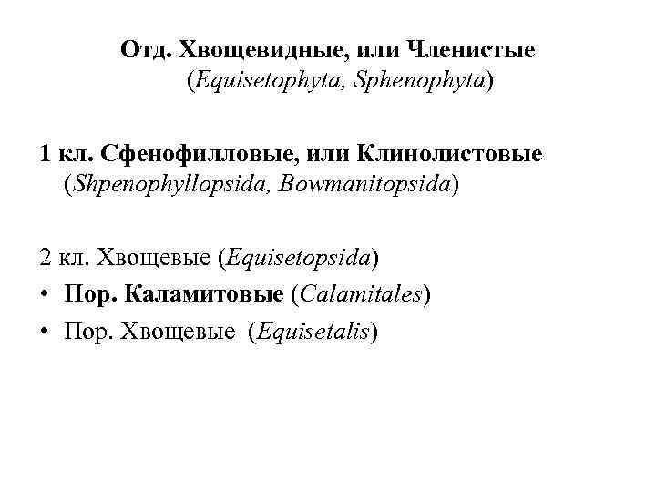 Отд. Хвощевидные, или Членистые (Equisetophyta, Sphenophyta) 1 кл. Сфенофилловые, или Клинолистовые (Shpenophyllopsida, Bowmanitopsida) 2