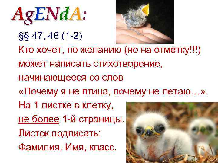 Ag. ENd. A: §§ 47, 48 (1 -2) Кто хочет, по желанию (но на