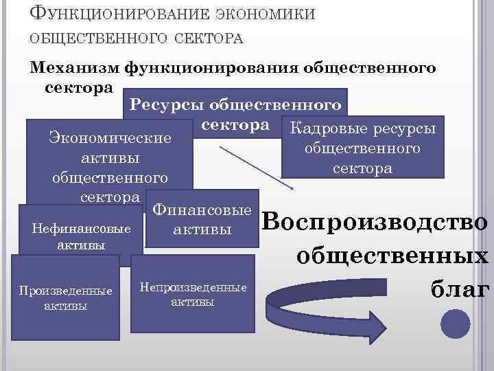 ФУНКЦИОНИРОВАНИЕ ЭКОНОМИКИ ОБЩЕСТВЕННОГО СЕКТОРА Механизм функционирования общественного сектора Ресурсы общественного сектора Кадровые ресурсы Экономические