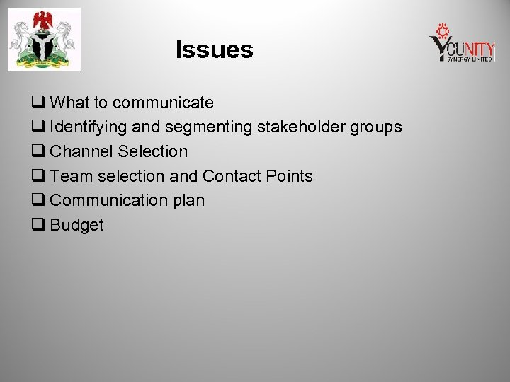 Issues q What to communicate q Identifying and segmenting stakeholder groups q Channel Selection