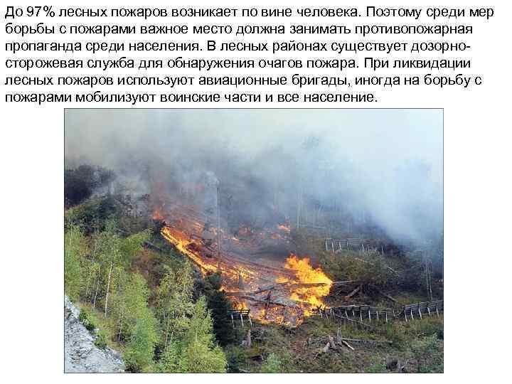До 97% лесных пожаров возникает по вине человека. Поэтому среди мер борьбы с пожарами