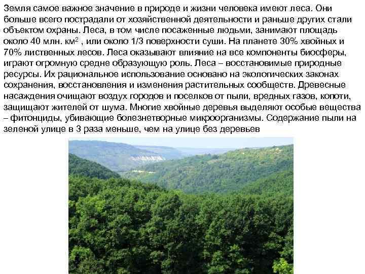 Земля самое важное значение в природе и жизни человека имеют леса. Они больше всего