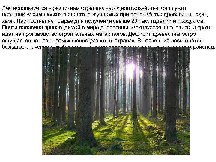 Лес используется в различных отраслях народного хозяйства, он служит источником химических веществ, получаемых при