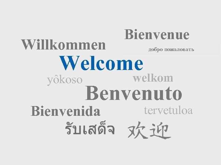 Willkommen Bienvenue добро пожаловать Welcome welkom yôkoso Benvenuto Bienvenida tervetuloa