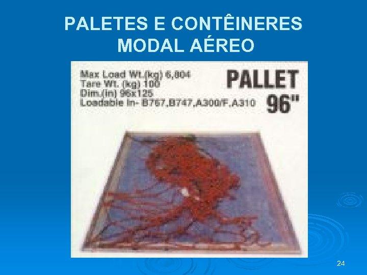 PALETES E CONTÊINERES MODAL AÉREO 24