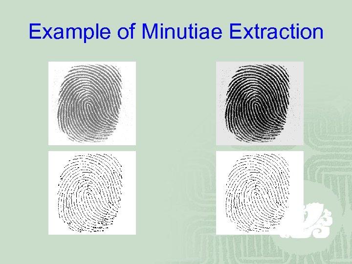 Example of Minutiae Extraction