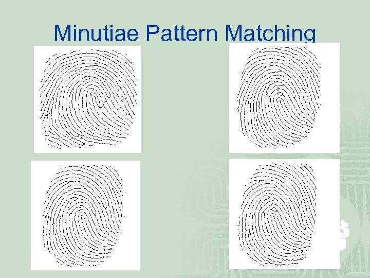 Minutiae Pattern Matching
