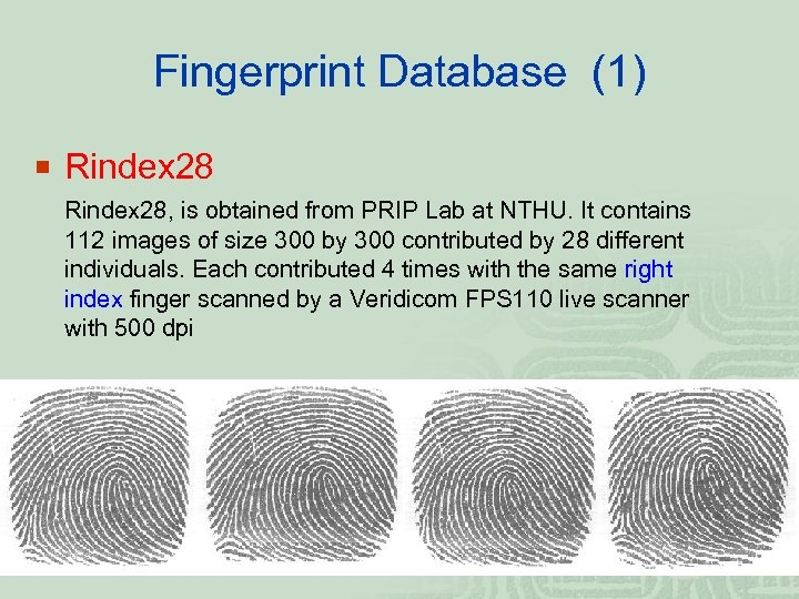 Fingerprint Database (1) ¡ Rindex 28, is obtained from PRIP Lab at NTHU. It