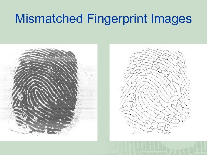 Mismatched Fingerprint Images