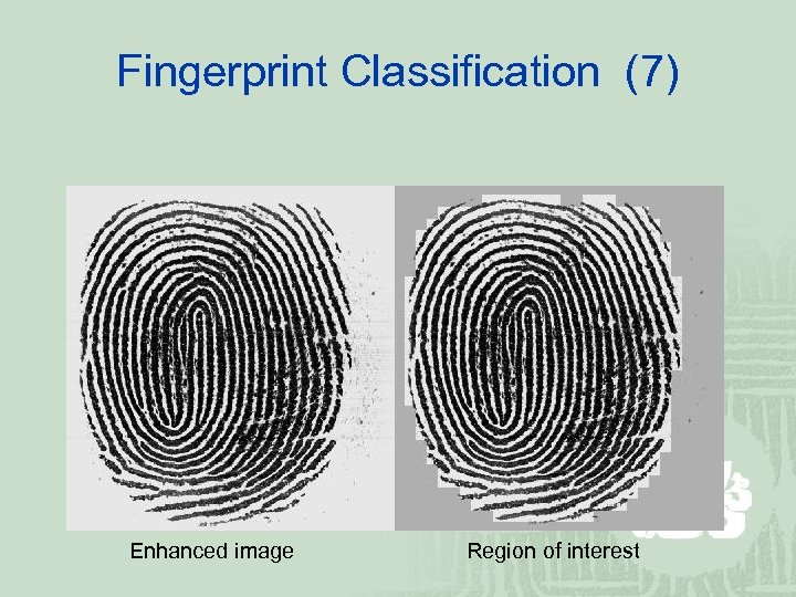 Fingerprint Classification (7) Enhanced image Region of interest