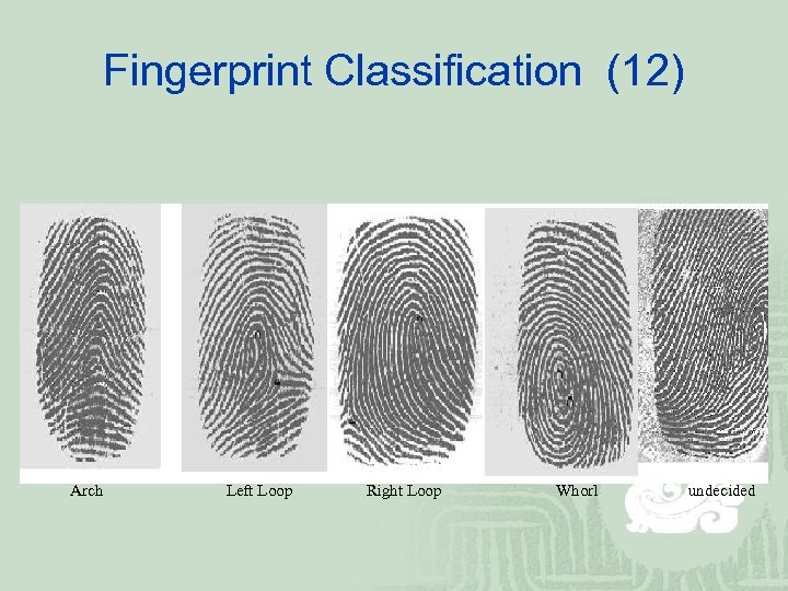 Fingerprint Classification (12) Arch Left Loop Right Loop Whorl undecided