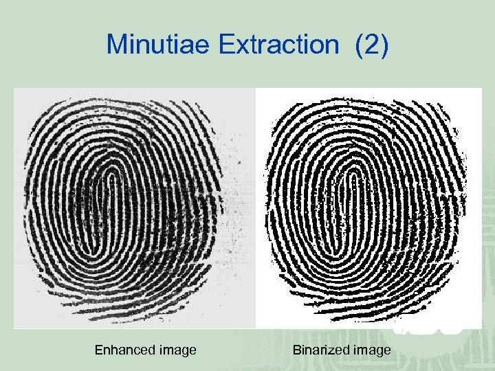 Minutiae Extraction (2) Enhanced image Binarized image