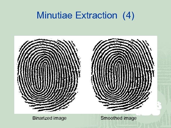 Minutiae Extraction (4) Binarized image Smoothed image