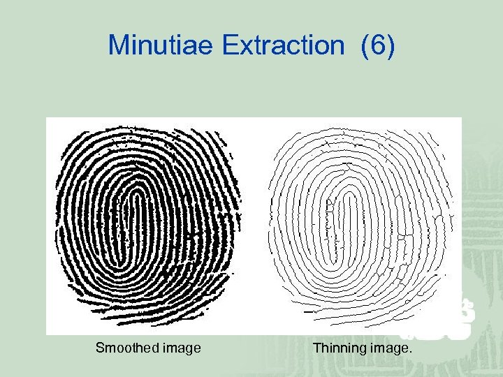 Minutiae Extraction (6) Smoothed image Thinning image.