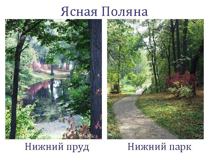 Ясная Поляна Нижний пруд Нижний парк
