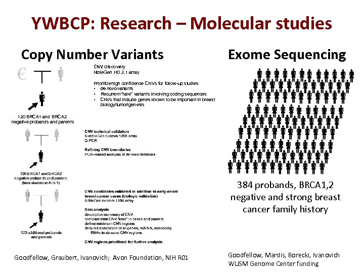 YWBCP: Research – Molecular studies Copy Number Variants € Exome Sequencing CNV discovery Nible.