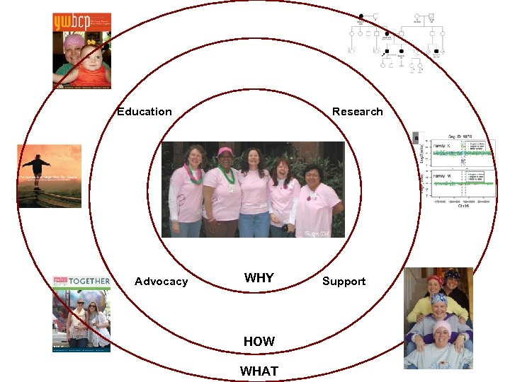 Education Advocacy Research WHY HOW WHAT Support