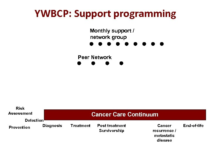 YWBCP: Support programming Monthly support / network group Peer Network Risk Assessment Detection Diagnosis